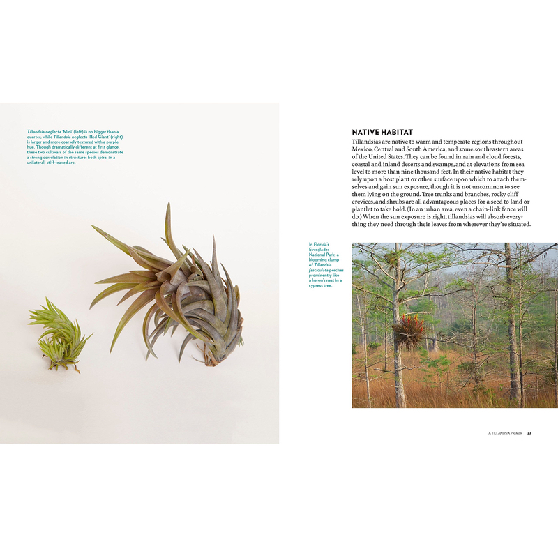 Air Plant Book by Zenaida Sengo Inside Page Native Habitat