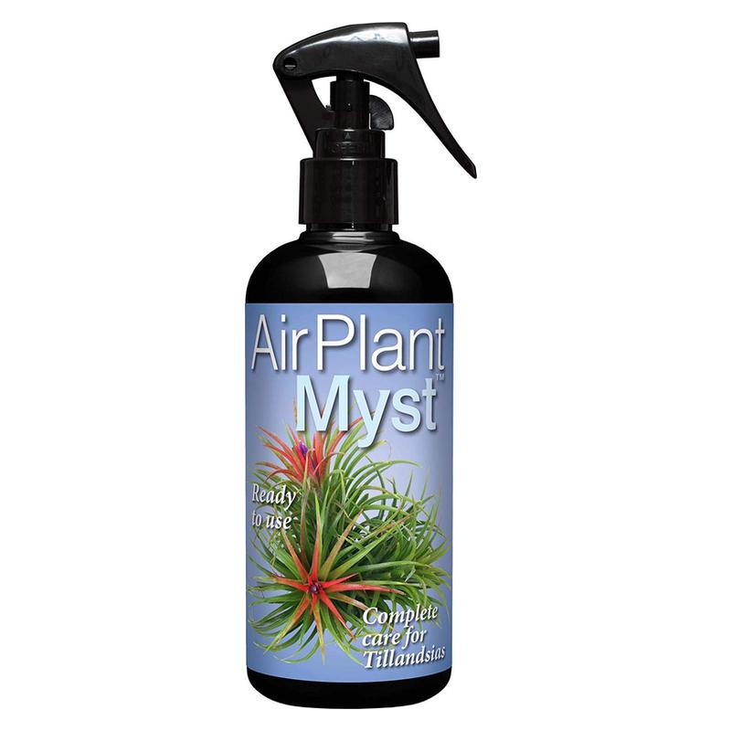 Air Plant Food