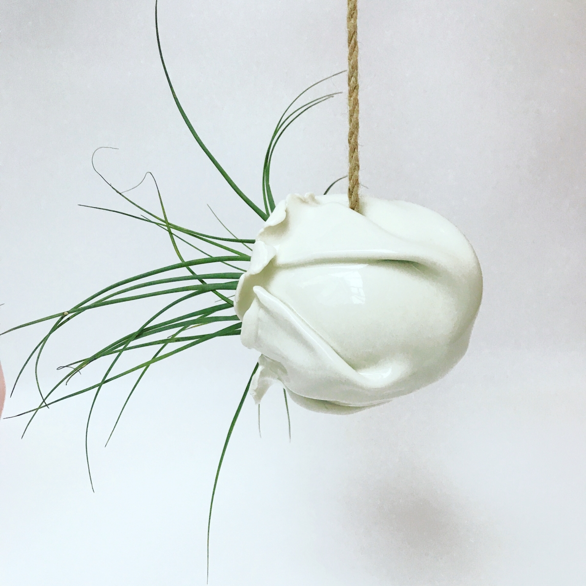Air Plant Holder Side View by Sonya Ceramic Art