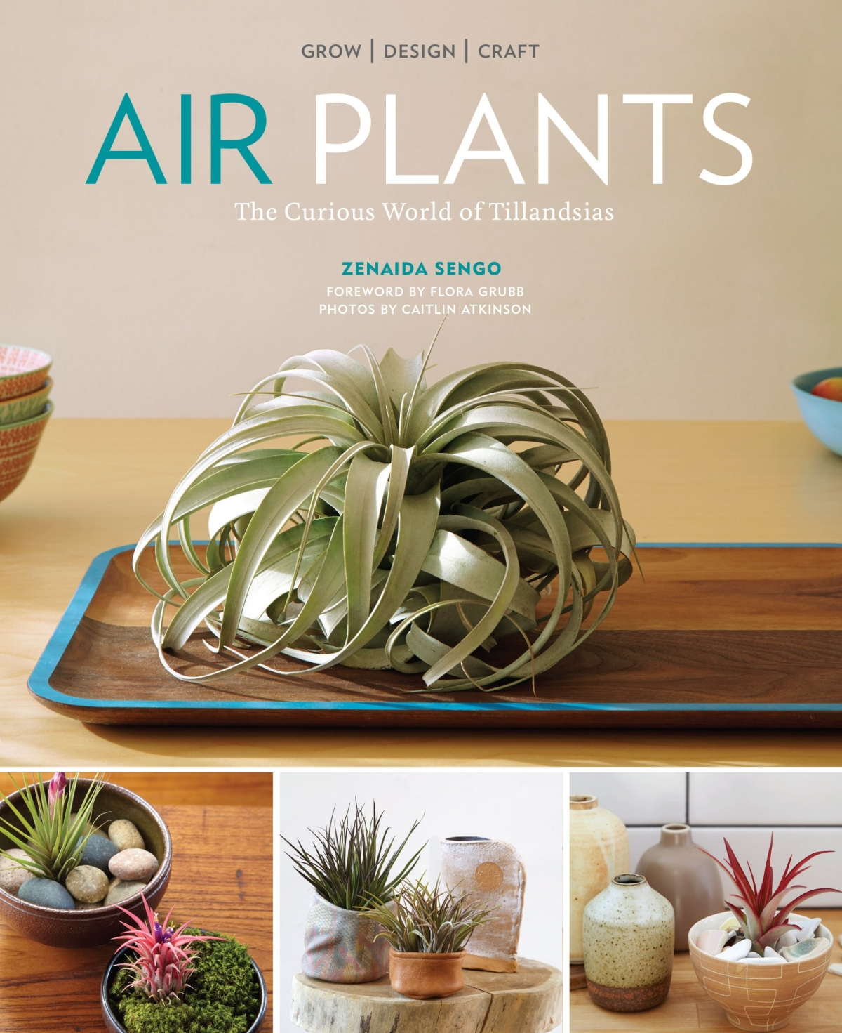 Air Plants Book by Zenaida Sengo
