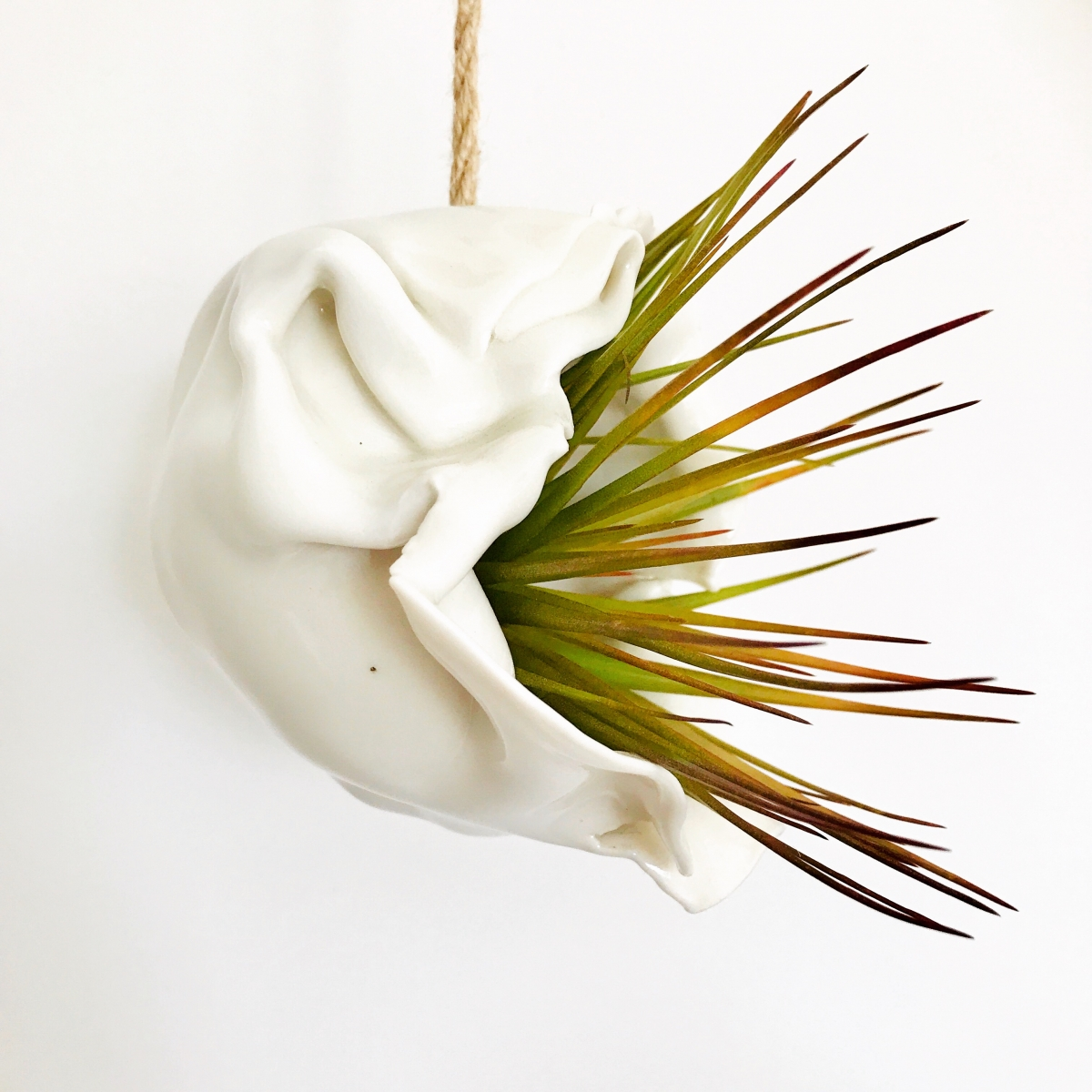Porcelain Air Plant Holder by Sonya Ceramic Art