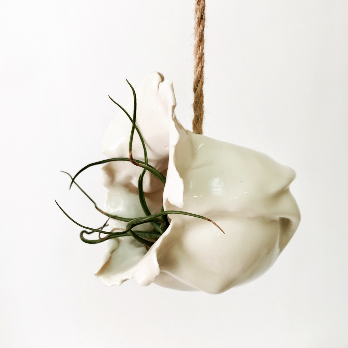 Small Air Plant Holder Side View by Sonya Ceramic Art