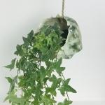 Trailing Ivy Hanging Planter by Sonya Ceramic Art