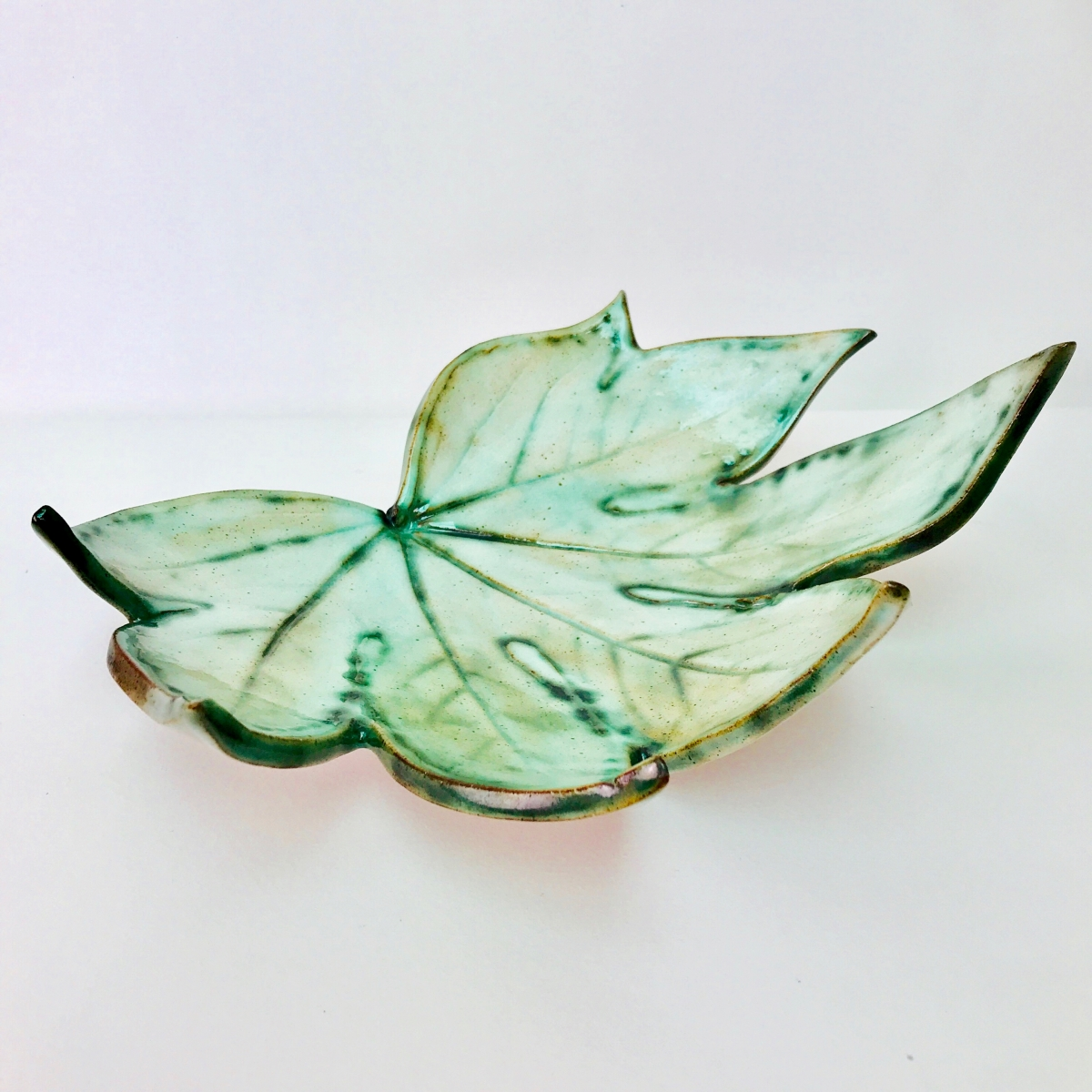 Fresh Green Fatsia Leaf Fruit Bowl