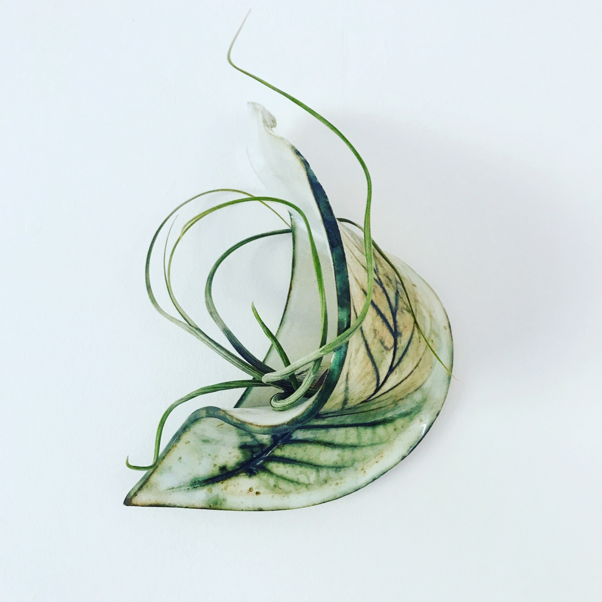 Ceramic Wall Art Planters for Air Plants by Sonya Ceramic Art