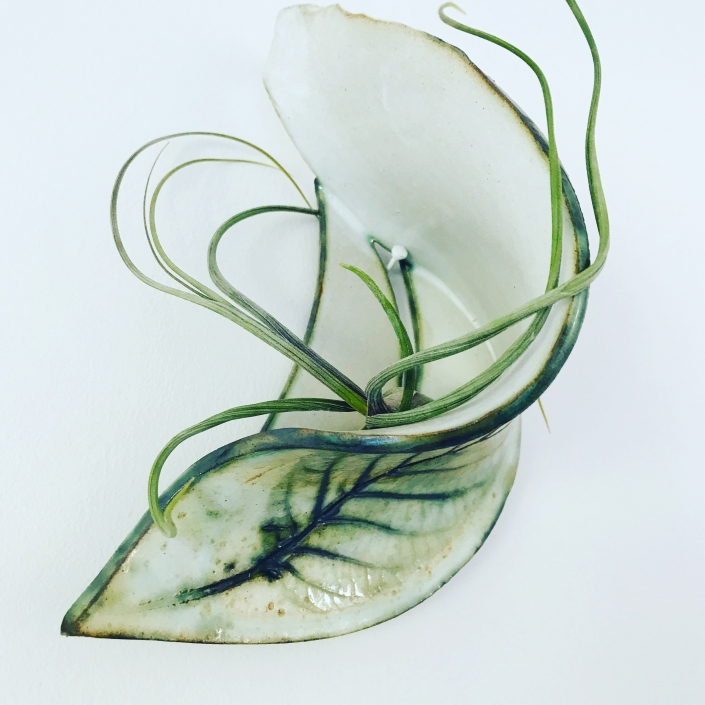 Wall Planter for Air Plant Bulbosa
