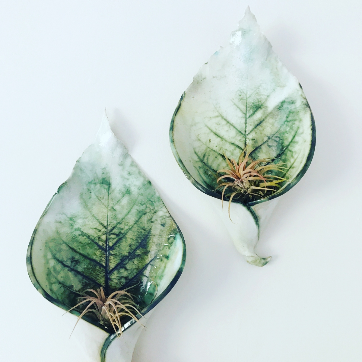 Wall Planters for Air Plants Calla Lily Design