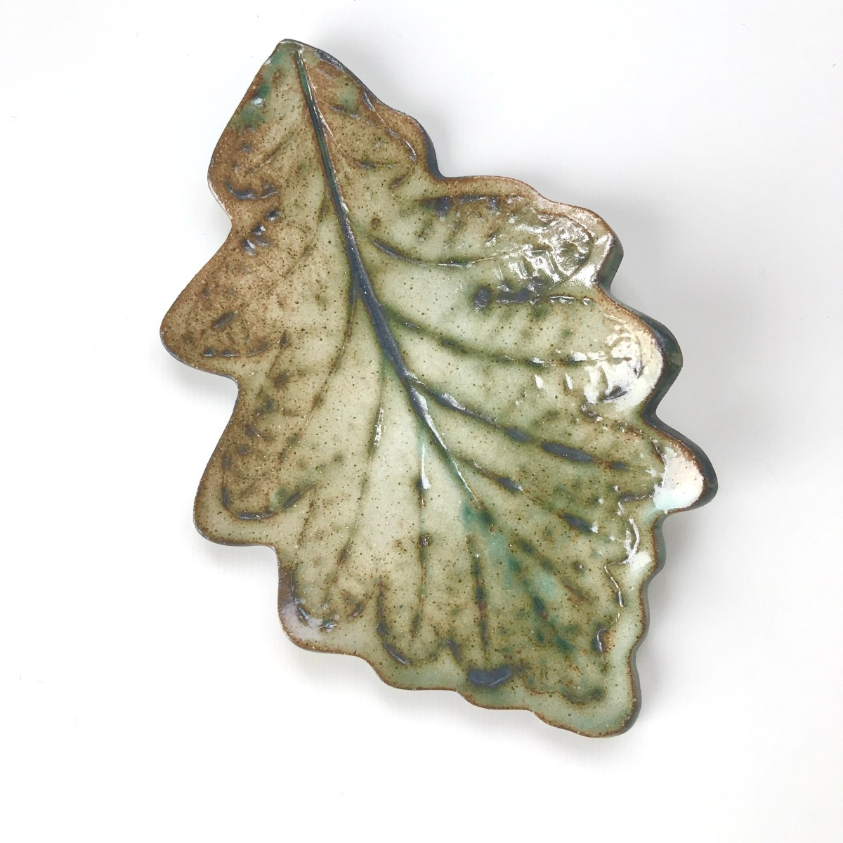 Fallen Leaf Ceramic Wall Art by Sonya Ceramic Art - Rustic Green Common Oak Leaf Design
